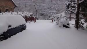 Erster Schnee in Lazy